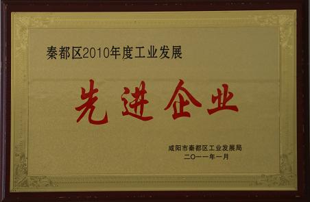 秦都区2010年度工业发展先进企业